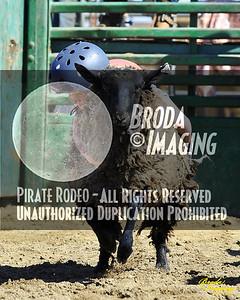 NPRA Adelanto Perf2, D1-29 ©Oct'15 Broda Imaging