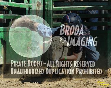 NPRA Adelanto Perf2, D1-41 ©Oct'15 Broda Imaging