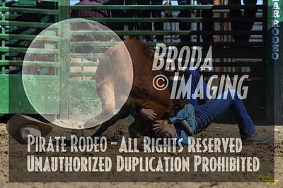 NPRA Adelanto Perf2, D1-123 ©Oct'15 Broda Imaging