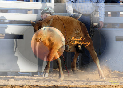 April'18 Adelanto NPRA Rodeo Perf1 D1-53  ©Broda Imaging
