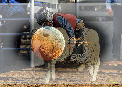 April'18 Adelanto NPRA Rodeo Perf1 D1-35  ©Broda Imaging