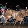 April'18 Adelanto NPRA Rodeo Perf1 D1-175  ©Broda Imaging