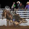 April'18 Adelanto NPRA Rodeo Perf1 D1-150  ©Broda Imaging