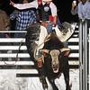 April'18 Adelanto NPRA Rodeo Perf1 D1-187  ©Broda Imaging