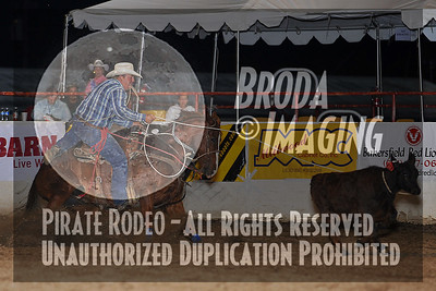 Bakersfield Perf2, D1-207 Copyright May'09 Phil Broda - PRCA