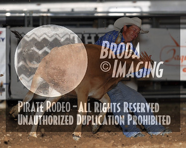 California Finals Rodeo 2015 Perf2 D1-149 ©Broda Imaging