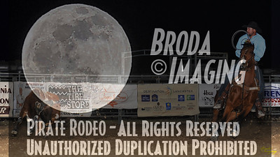 California Finals Rodeo 2015 Perf2 D1-220 ©Broda Imaging
