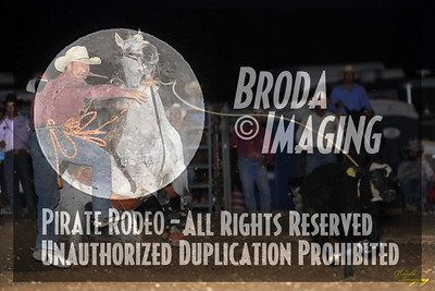 California Finals Rodeo 2015 Perf2 D1-94 ©Broda Imaging