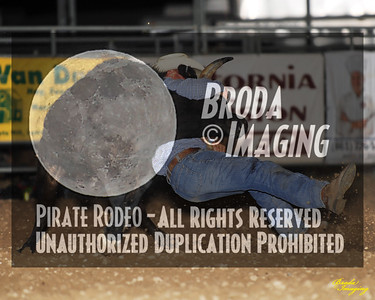 California Finals Rodeo 2015 Perf2 D1-143 ©Broda Imaging