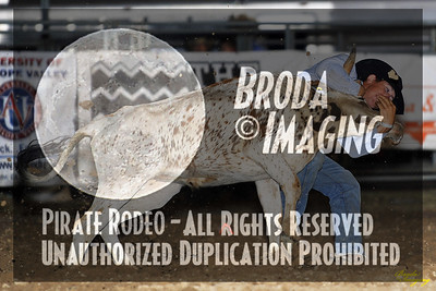 California Finals Rodeo 2015 Perf2 D1-148 ©Broda Imaging