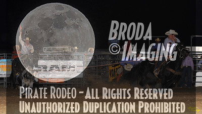 California Finals Rodeo 2015 Perf2 D1-222 ©Broda Imaging