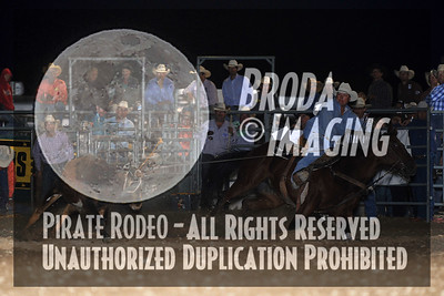 California Finals Rodeo 2015 Perf2 D1-205 ©Broda Imaging