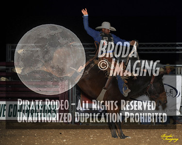 California Finals Rodeo 2015 Perf2 D1-200 ©Broda Imaging