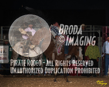 California Finals Rodeo 2015 Perf2 D1-84 ©Broda Imaging