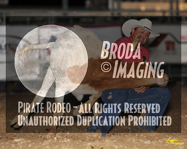 California Finals Rodeo 2015 Perf2 D1-145 ©Broda Imaging