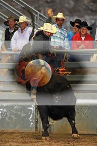 Norco Bullride D1-49 Copyright Aug'08 Phil Broda - PRCA