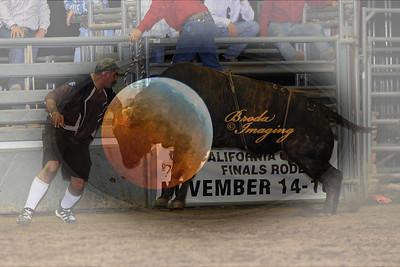 Norco Bullride D1-95 Copyright Aug'08 Phil Broda - PRCA