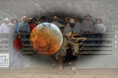Norco Bullride D1-51 Copyright Aug'08 Phil Broda - PRCA