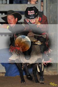 Norco Ca Perf2 D1-107 4x6 ©Broda Imaging Aug'15