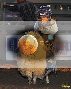 Norco Ca Perf3, D1-56 ©Broda Imaging Aug'15