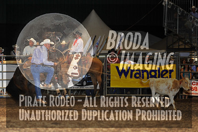 Norco Perf2, D1-60 Copyright August 2010 Phil Broda - PRCA