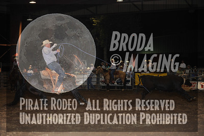 Norco Perf2, D1-117 Copyright August 2010 Phil Broda - PRCA