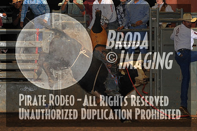 Norco Perf2, D1-129 Copyright Aug'12 Phil Broda - PRCA
