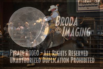 Norco Perf3, D1-189 Copyright August 2011 Phil Broda - PRCA