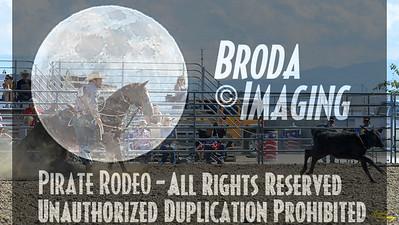 California Finals Rodeo 2015 Perf3, D1-100 ©Broda Imaging