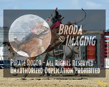 California Finals Rodeo 2015 Perf3, D1-69 ©Broda Imaging