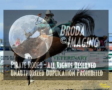 California Finals Rodeo 2015 Perf3, D1-76 ©Broda Imaging