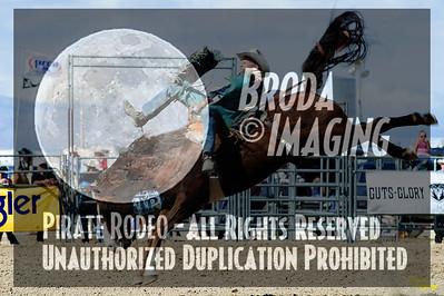California Finals Rodeo 2015 Perf3, D1-77 ©Broda Imaging