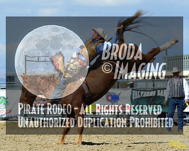 California Finals Rodeo 2015 Perf3, D1-80 ©Broda Imaging