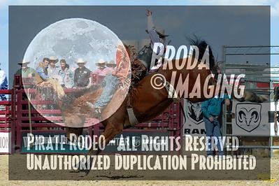 California Finals Rodeo 2015 Perf3, D1-82 ©Broda Imaging