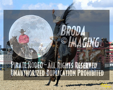 California Finals Rodeo 2015 Perf3, D1-172 ©Broda Imaging
