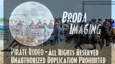 California Finals Rodeo 2015 Perf3, D1-191 ©Broda Imaging