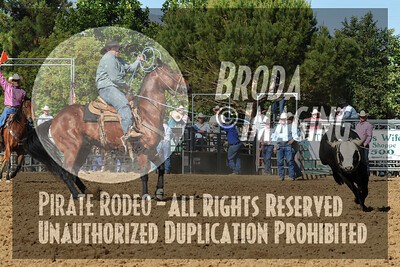 Palmdale Slack D1-77 Copyright June'08 Phil Broda-PRCA