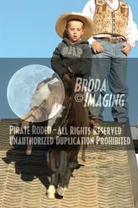 Phelan D1, D2-103 Copyright Oct'07 PABroda-PRCA