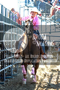 Phelan D1, D1-56 Copyright Oct'07 Phil Broda-PRCA