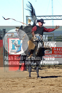 Phelan D1, D1-44 Copyright Oct'07 Phil Broda-PRCA