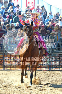 Phelan D1, D1-51 Copyright Oct'07 Phil Broda-PRCA