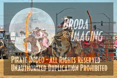 Phelan D1, D1-101 Copyright Oct'07 Phil Broda-PRCA
