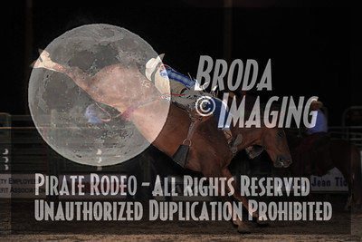 San Bernardino Perf1-60 Copyright Sept'13 Broda Imaging