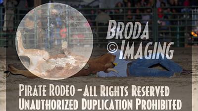 San Bernardino Perf1-46 Copyright Sept'13 Broda Imaging