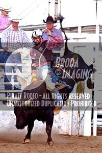 Tehachapi D1, D3-23 Copyright Aug'07 PABroda PRCA