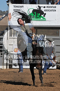 Tehachapi Perf2, D1-74 Copyright Aug'08 Phil Broda - PRCA