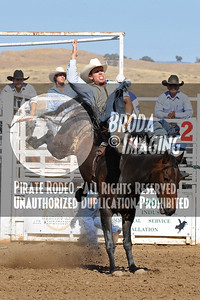 Tehachapi Perf2, D1-72 Copyright Aug'08 Phil Broda - PRCA