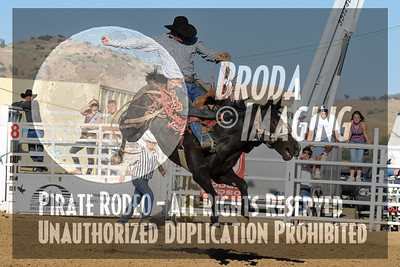 Tehachapi Perf2, D1-175 Copyright Aug'08 Phil Broda - PRCA