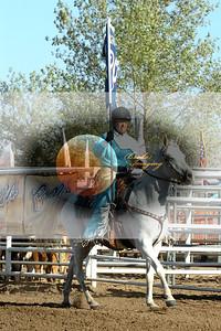 Tehachapi D1, D1-45 Copyright Aug'07 PABroda PRCA