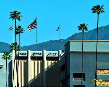 Spring Morning At Santa Anita